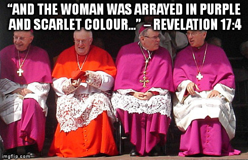 Image result for pope francis with scarlet colors